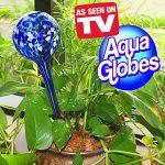 Aqua Globe